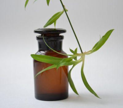 pharmacy_shtanglas_glass_bottle_chemist_glassware_dark_glass_plant_floral_water_hydrolat-1032875.jpg!d